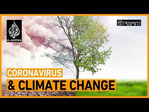 Coronavirus Exposures Mean a Only 0.01 C Reduction to Global Warming by 2050