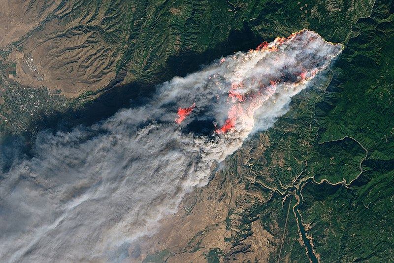 California's Zogg blaze, caused by a tree that hits PG&E power lines
