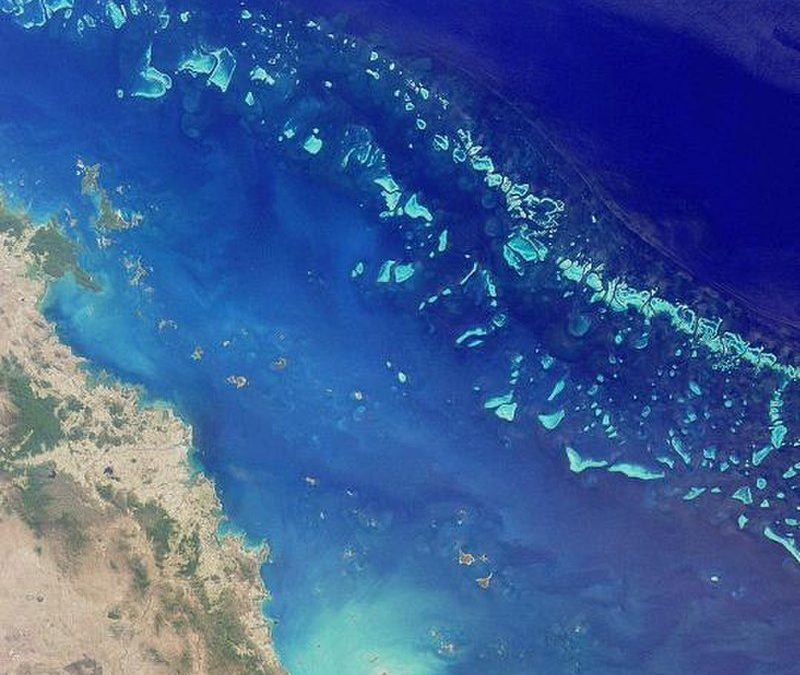 UNESCO recommends Great Barrier Reef be classified as 'in danger'