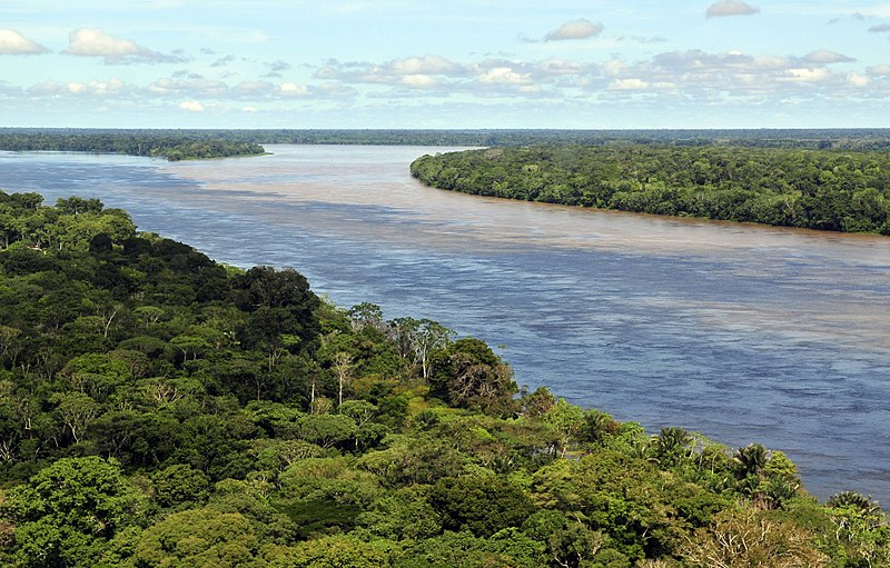 Portions of the Amazon rainforest are now emitting more carbon than they absorb