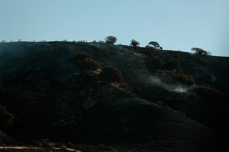 Bootleg Fire Growing Bigger Than NYC, as Strong Winds And Dry Weather Fuel Oregon Wildfire
