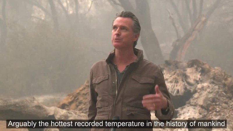 High temperatures and climate change: fires consume large parts of the planet, and in Algeria there have been 42.