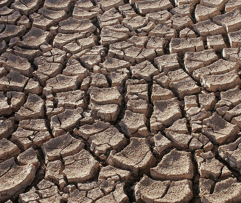Worst drought in Southwestern US in a century 'linked' to climate change: NOAA